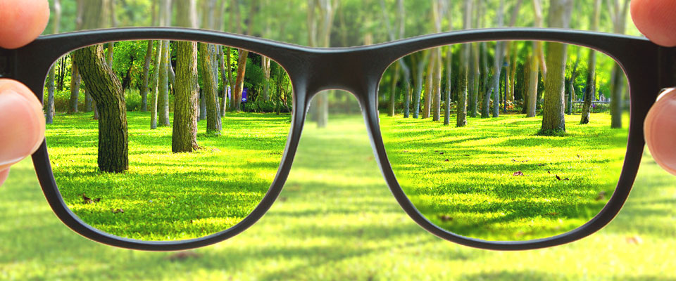 Products – Bolton Optical Group  Products – Bo...